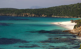 海滩意大利撒丁岛tuerredda 免版税图库摄影