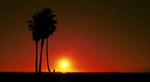 海滩指明日落团结的威尼斯 图库摄影