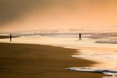 海滩捕鱼 免版税图库摄影