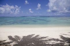 海滩掌上型计算机热带影子的结构树 库存图片