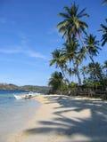 海滩掌上型计算机热带菲律宾的结构树 免版税图库摄影