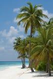 海滩掌上型计算机 免版税图库摄影
