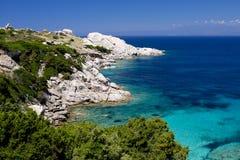 海滩撒丁岛品柱介壳 免版税库存图片