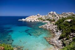 海滩撒丁岛品柱介壳 免版税库存照片