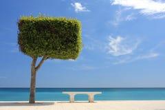 海滩散步 免版税库存图片