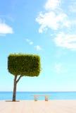 海滩散步 库存照片