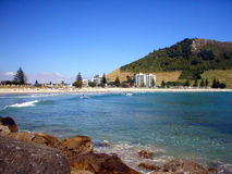海滩新的风景西兰 免版税图库摄影