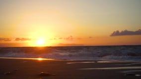 海滩日落自然美丽的橙色海天空水加利福尼亚旅行洛杉矶岸Timelapse田园诗反射波浪 股票视频