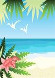 海滩明亮晴朗 免版税库存照片