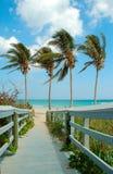 海滩星期天 库存图片