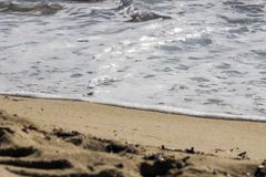 海滩柔和的通知 库存图片