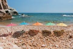 海滩树荫 免版税库存图片