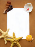 海滩框架 免版税图库摄影