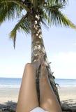 海滩椰子休息结构树的女孩行程热带 免版税库存照片