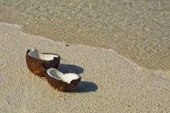 海滩椰子被开张的含沙 免版税库存照片