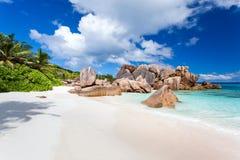 海滩椰树塞舌尔群岛 库存图片
