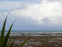 海滩横向 免版税库存照片