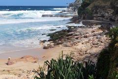 海滩步行的Bronte零件的悉尼Bondi与海洋和岩石海岸线的 库存照片