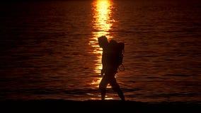 海滩步行者 库存图片