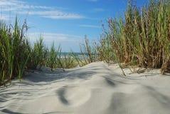 海滩沙丘水平的沙子 免版税库存图片