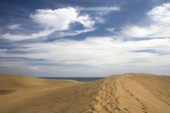 海滩沙丘maspalomas 库存图片