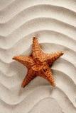 海滩沙子海星暑假波浪白色 库存照片