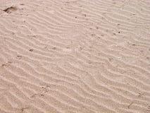 海滩沙子纹理 免版税图库摄影