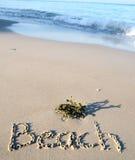 海滩沙子背景 免版税库存图片