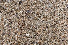 海滩沙子顶视图背景和纹理的 夏天背景概念 免版税库存图片