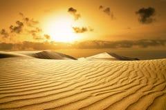 海滩沙漠金子日落 免版税库存照片