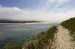 海滩沿岸航行和平的含沙海岸线 免版税图库摄影