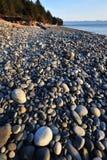海滩法语 库存图片