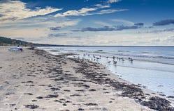 海滩波罗的海在10月, Jurmala 免版税库存图片