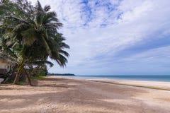 海滩海和椰子树 图库摄影