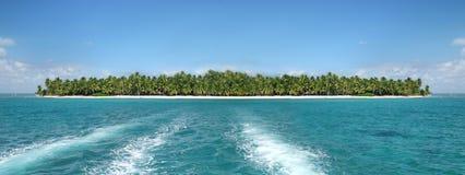 海滩海岛热带的棕榈树 图库摄影