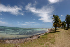 海滩海岛热带的马提尼克岛 免版税库存图片