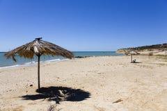 海滩海岛玛格丽塔酒 图库摄影