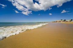 海滩海岛玛格丽塔酒 库存图片