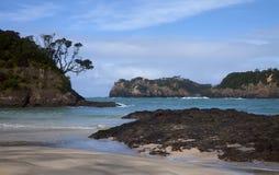 海滩海岛matapouri新的北部西兰 图库摄影