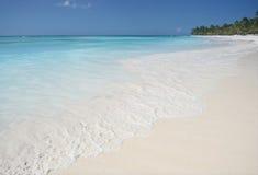 海滩海岛saona 库存照片