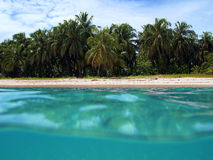 海滩海岛zapatilla 库存图片