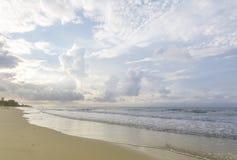 海滩海洋热带通知 免版税库存照片