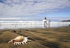 海滩海浪 免版税库存图片