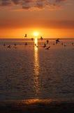 海滩海湾 库存图片