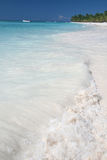 海滩海洋掌上型计算机热带沙子的结构树 免版税库存照片