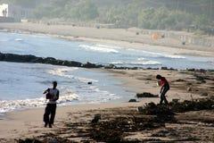 海滩清洁科西嘉人 免版税库存图片