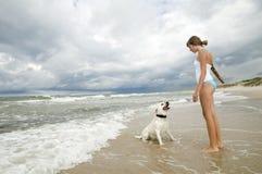 海滩演奏猎犬的拉布拉多 免版税库存图片