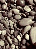 海滩潮湿的含沙石头 图库摄影