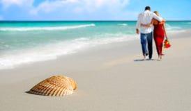 海滩热带夫妇的贝壳 库存照片