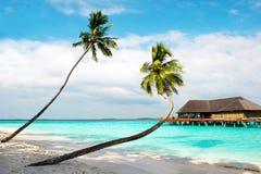 海滩热带海岛的掌上型计算机 免版税图库摄影